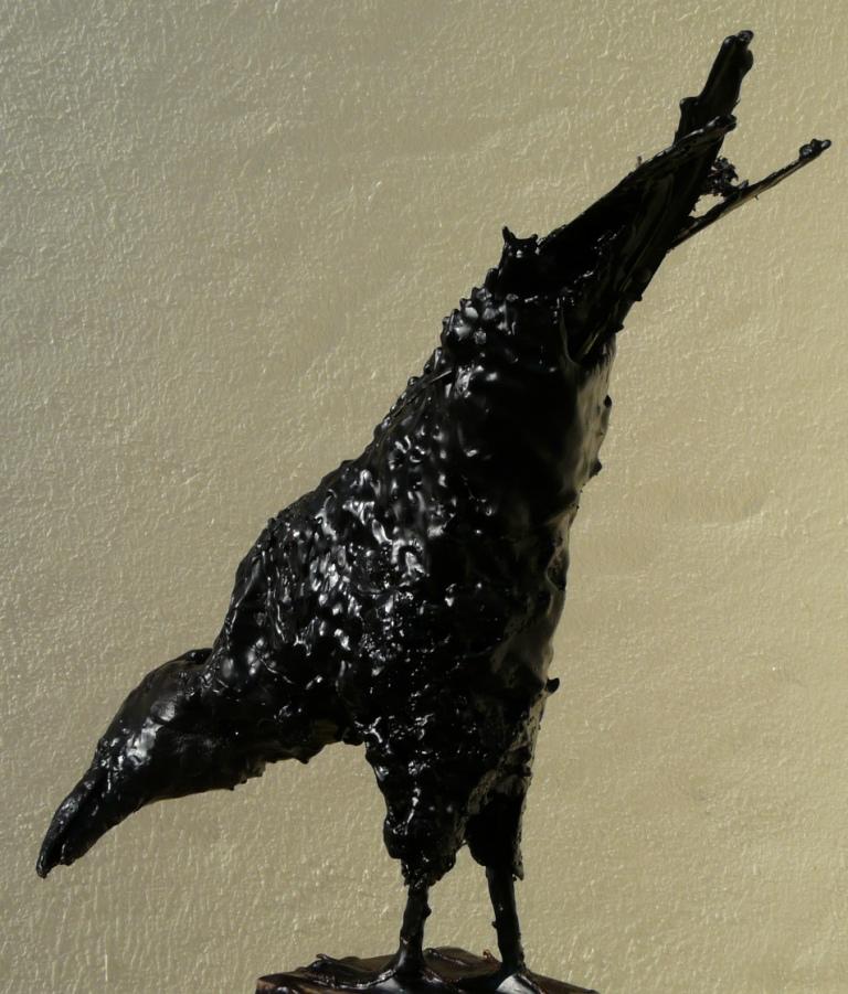 corbeau cire