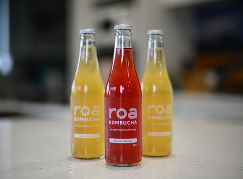 ROA horizontal 2.jpg