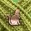 Thumbnail: Kikker