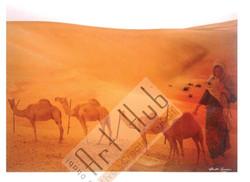 SPIRIT AND CAMEL