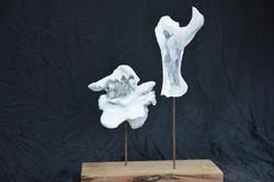 Nomads Memory on Kamel Bones II