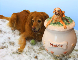Custom Golden Retriever Urn.Maddie