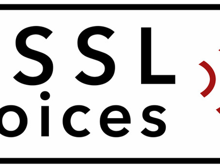VSSL Voices: Experience of a VSSL Fellow