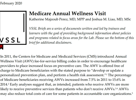 Issue Brief: Medicare Annual Wellness Visit