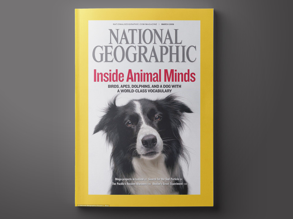 NATIONAL GEO COVER.jpg