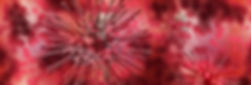 virus-4051654_1920.jpg