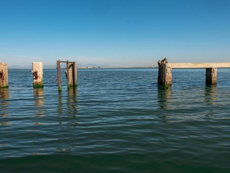 Una mattina in laguna