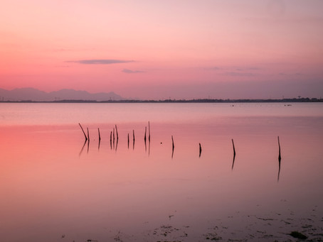 """""""Voci dalla Laguna"""": ciclo di incontri itineranti"""