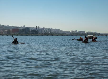 Riguardo all'esposizione delle foto del progetto sulla Laguna di Santa Gilla