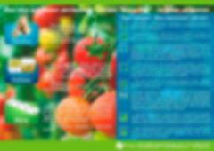 листовка мат1.jpg