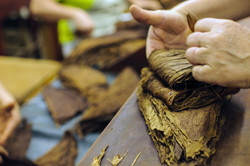 tobacco_padding_72.jpg