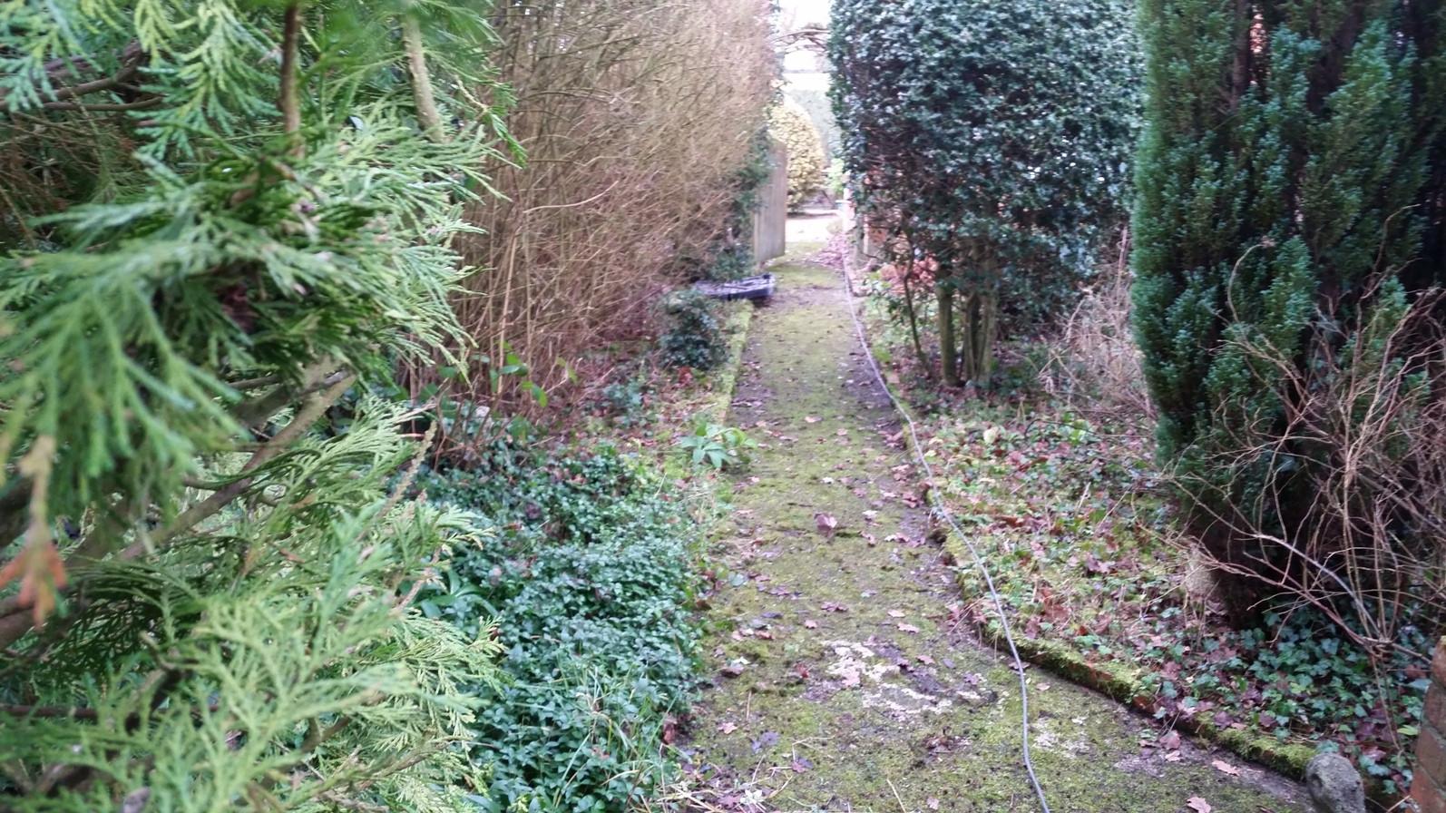 Pathway Thatcham