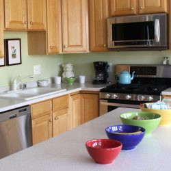 4 Dirtiest Appliances in the Kitchen – and How to Clean Them!