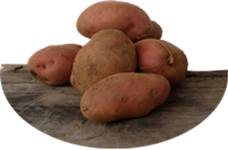 Patate Rous.png