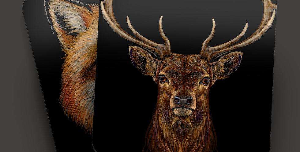 Wildlife Animals Drink Coasters (Set of 4)