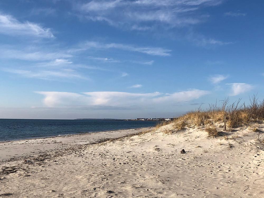 W. Dennis Beach, Dec 2019