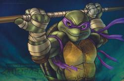TMNT_Donatello.jpg