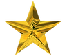 IW- Gold Star.02.png