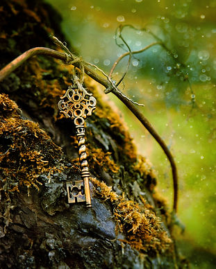 vintage key in the tree. still life with
