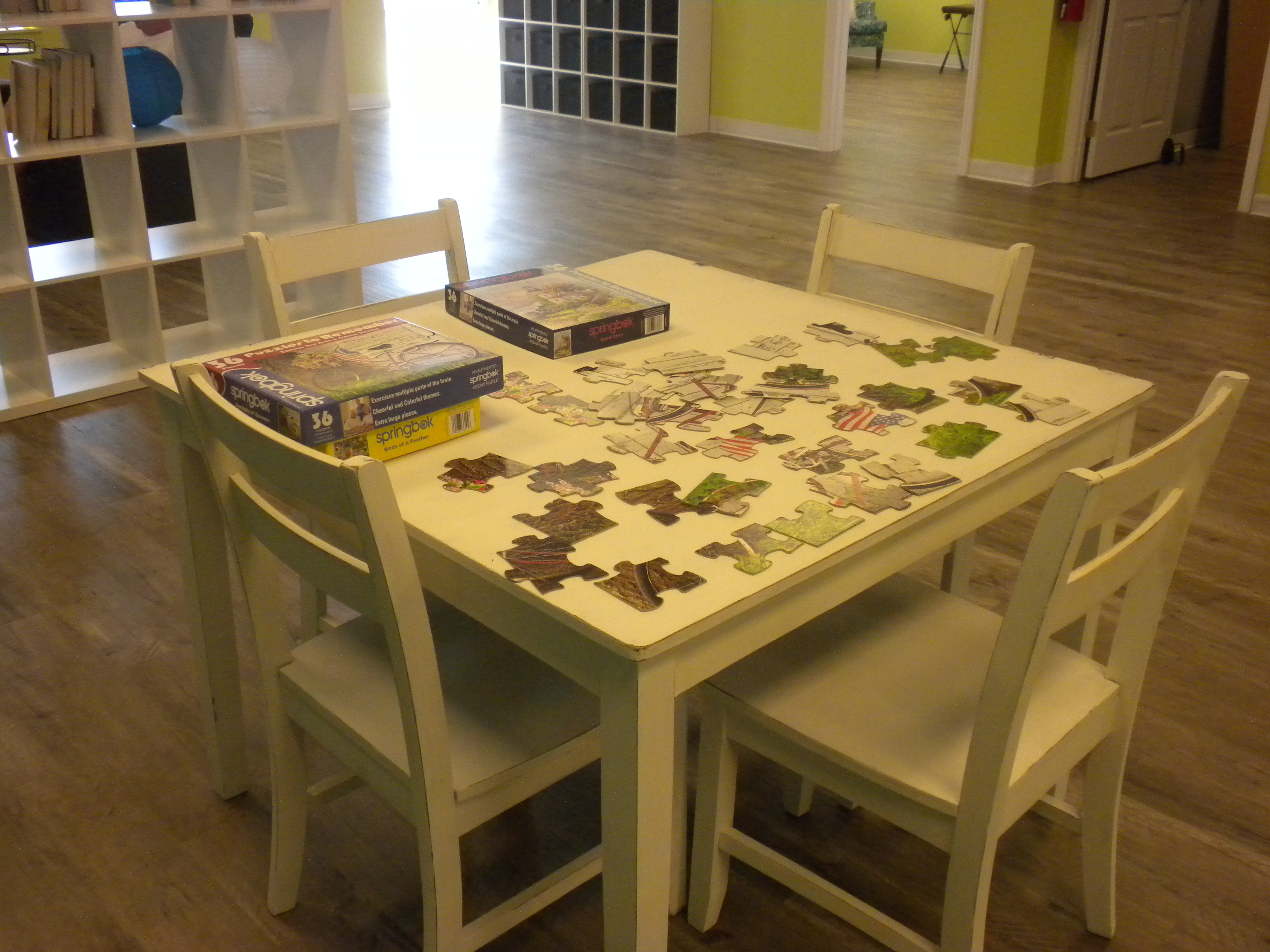 Daycations adult day care puzzle fun