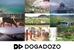 DOGADOZOの登録動画約60本を無料で使用できるキャンペーンが始まりました!!