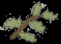 grøngren.png