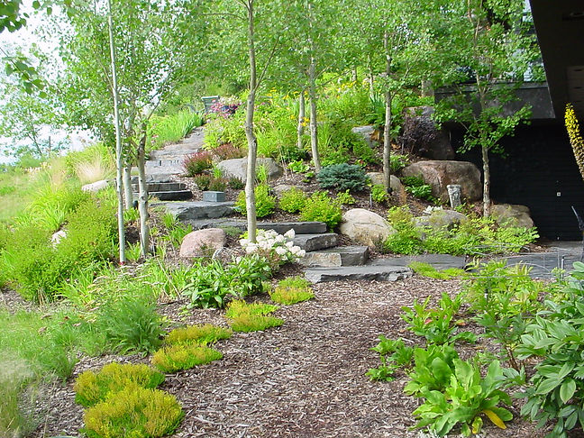 Trees, Shrubs, Perennials, Rocks, Rundle, Granite, Fieldstone, nature, natural