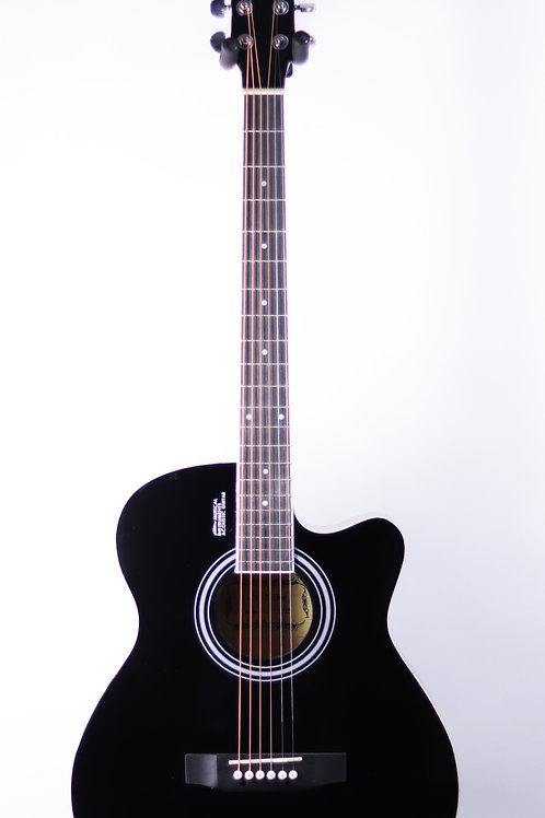 Акустическая гитара Elitaro E4010C BK