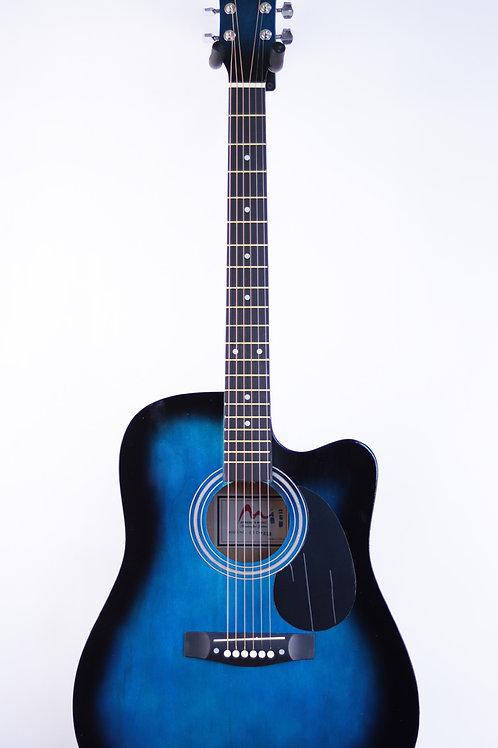 Акустическая гитара Spread&Music 41C-BLS