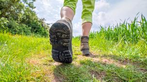 Yürüyüş Yapmanın 7 Bilimsel Faydası