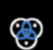 ICONS website triniti-56.png