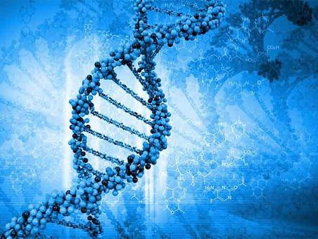 ДНК Е ЖИВАТА ИСТОРИЯ