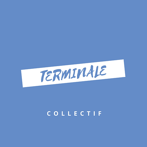 Stage collectif Terminale L