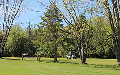 Golf Bury.jpg