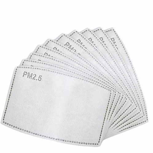 PM 2.5 Mask Filters