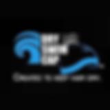 Sq_Logo-DrySwimCap.png