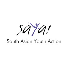 The Red Curtain Project featured on South Asian Youth Action's blog.