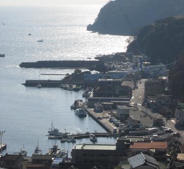 真鶴港(三好旅館より)