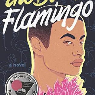 The Black Flamingo by Dean Atta (G)