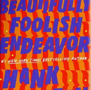 A Beautifully Foolish Endeavor by Hank Green (Q)