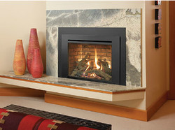 Gas fireplace insert with wood