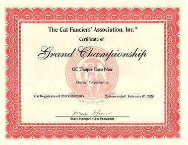 Coco - CFA Grand Champion on 020120.jpg