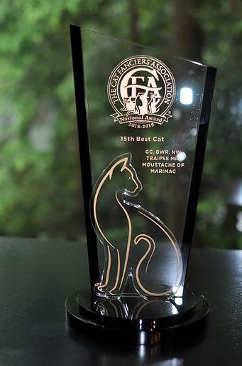 CFA 15th BEST CAT - 2019.JPG