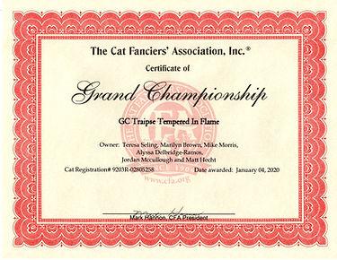 Flame's CFA Grand Champion!.jpg