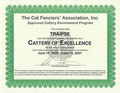 CFA Cattery of Excellence until June 19,