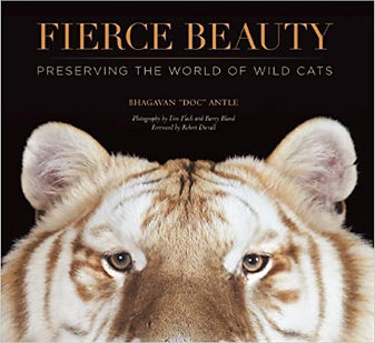 Fierce Beauty - Book.jpg