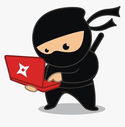 Online Ninja Classes
