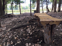 Firepit & Picnic area on North Trail