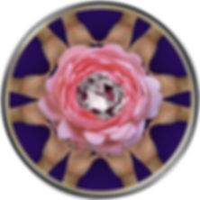 C.E.T.G. - Logo