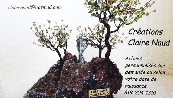 Arbres sur cristaux (création de Claire Naud), bijoux et livre
